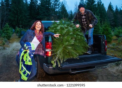 Man and woman loading fresh cut Christmas tree into truck at far
