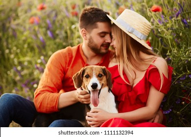 Man and woman sit with a funny Beagle on the green field with red poppies