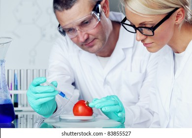 man and woman try to change tomato DNA