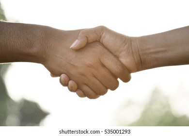 Man and women doing handshake. Illustrate a respect or greeting or teamwork to each other.
