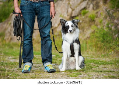 Man working with dog