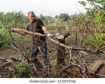 The man is working in the garden. He cuts down the trees with a chainsaw and drags dry logs and twigs, cleaning the surface.