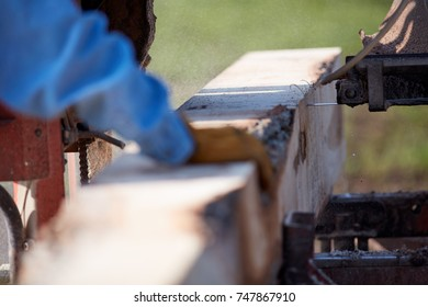 Man working on a portable saw milling lumber for raw planks for construction in a close up view of his hand guiding the wood