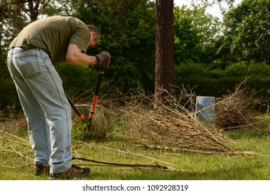 Man working on yard cleanup