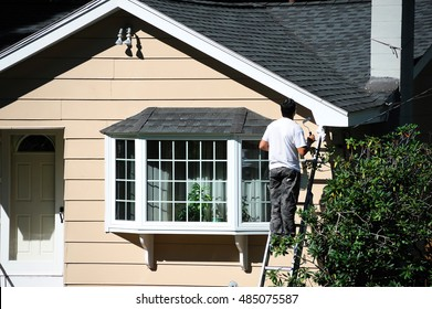 man working outdoor on ladder painting the house