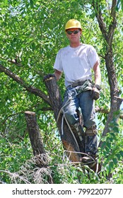 Man working in a tree to trim it with all his gear and equipment for safety.