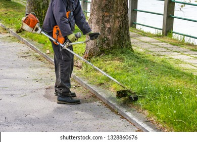 Man with worn bush cutter trims overgrown lawn round trees next to road