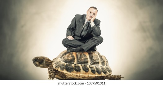 Manager sitting on a turtle
