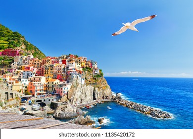 Manarola, Italy, National park Cinque Terre, UNESCO world heritage list. Beautiful view of ancient coastal city Manarola and seagull soaring in the sky over Ligurian sea.