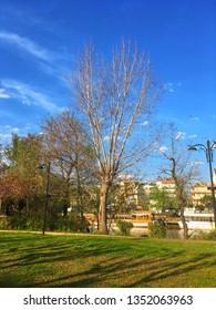 Manavgat, Antalya / Turkey - March 21, 2019: A river Manavgat seen through green trees, blue sky, clouds. Manavgat river in Antalya. River landscape from Manavgat, Antalya, Turkey.