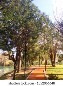 Manavgat, Antalya / Turkey - March 21, 2019: A river Manavgat seen through green trees, park, blue sky, Manavgat park, trees in Antalya. Garden, park landscape from Manavgat, Antalya, Turkey.