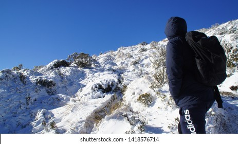 Manawatu-Wanganui, New Zealand - June 3rd 2019.  Tramping to the upper section of the Mt Urchin Track in early winter. visitor walking up the track that covered in snow.