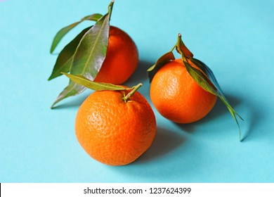 Mandarines, clementine, tangerine with leaves on blu background. Top view