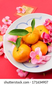 Mandarins with Red Packets and Plum flowers on red background