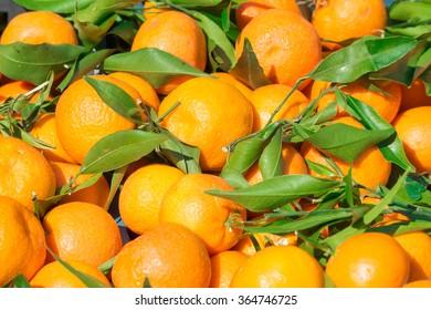 mandarins, tangerines!Very sweet and tasty citrus