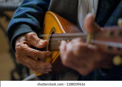 The Mandolin Player - Shutterstock ID 1188339616