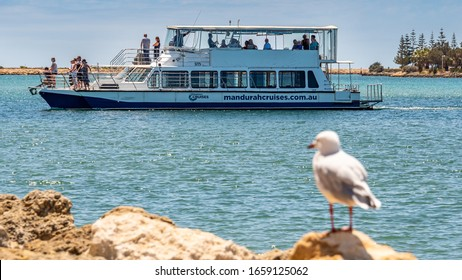 Mandurah, WA / Australia - 02/07/2020. The Mandurah foreshore is popular with tourists having restaurants, fish & chips, boating, entertainment and seagulls.