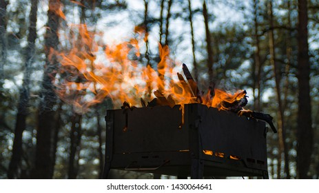 Mangal in forest with flame