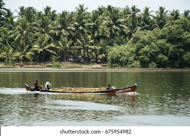 MANGALORE, INDIA - APRIL 16, 2016: an old man rowing a long boat in the river surrounded with coconut trees
