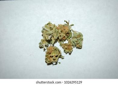 Mango - Cannabis