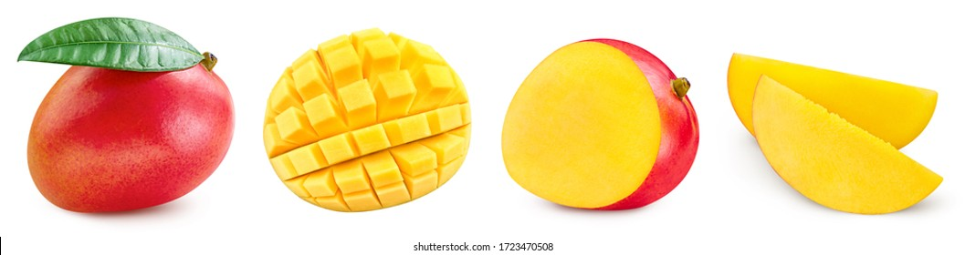 Mango collection. Mango fruits with green leaf isolated on white background. Mango with clipping path