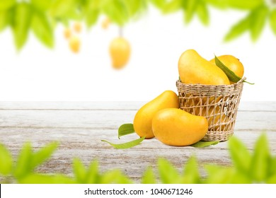 Mango fruit in basket on white table with frame of green leaf and isolated background