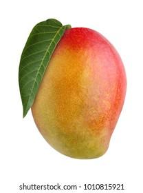 mango fruit isolated on white background. ripe tropical fruit.
