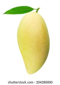 mango fruit with leaf isolated on white background