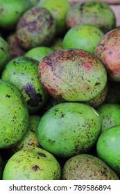 mango fruits as very nice food background