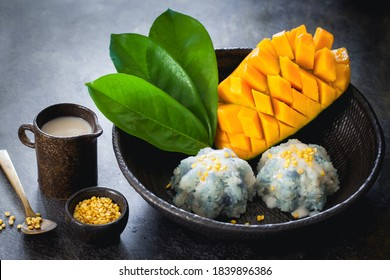Mango and sticky rice, Thai sweet dessert, coloured with butterflypea flower on dark background