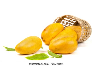 Mangoes in basket with leaves isolated