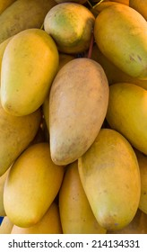 Mangoes by the Bunch