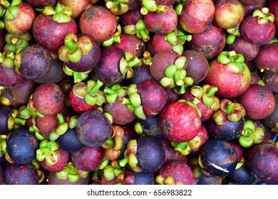 Mangosteen queen of fruit, Mangosteen queen of fruit queen of fruit