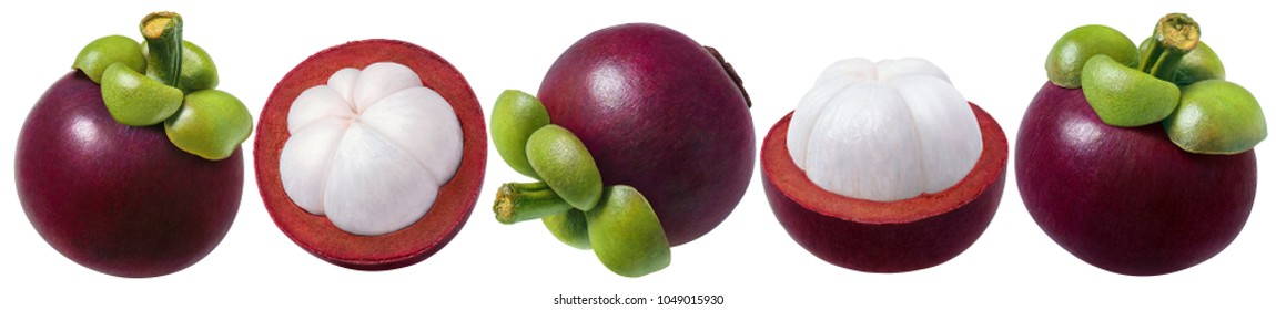 Mangosteen set. Several options of fruit isolated on white background as package design elements