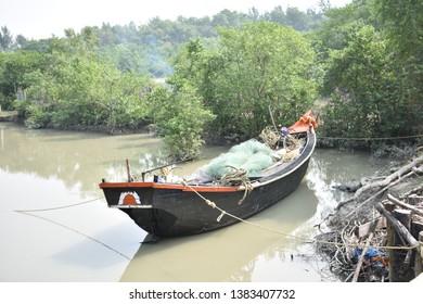 Mangrove forest at Sundarbans , India