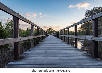 Mangrove Wooden Walkway