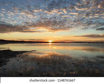 Mangroves at low tide at sunrise, South Australia mornings on Spencer Gulf on the Eyre Peninsula on remote beach in Australian winter