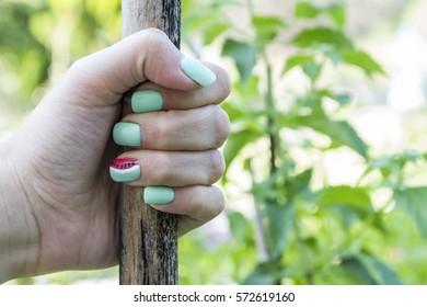 Manicure - Beauty treatment photo of nice manicured fingernails. Soft focus