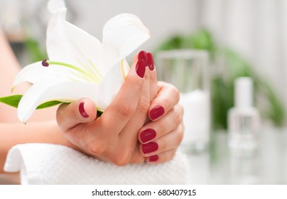 Manicure concept. Hand care at the spa. Beautiful woman's hands with perfect manicure at  beauty salon.