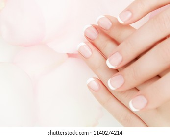 Manicure, Hands spa Beautiful woman hands, soft skin, beautiful nails with pink rose flowers petals. Healthy Woman hands. Beauty salon. Beauty treatment. Female nails with french manicure