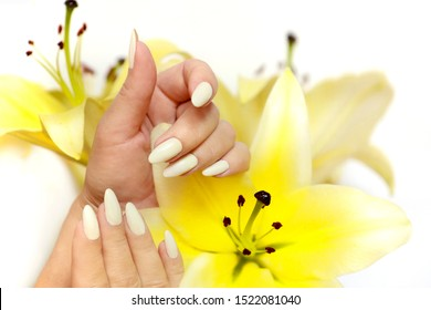 Manicure and pedicure at a long oval shaped nails with yellow lilies on a white background.