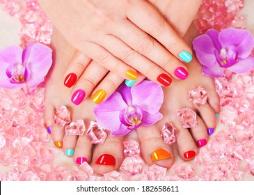 Manicure and pedicure. Nail polish and Accessories. Colorful Studio Shot of Stylish Woman. Vivid Colors. Rainbow Colors