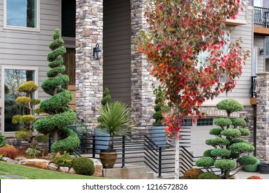 Manicured garden in front yard of home with topiary trees potted plants in upscale suburban neighborhood