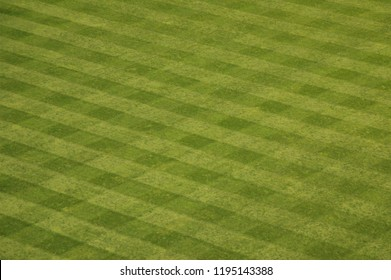 Manicured lawn in a baseball stadium outfield