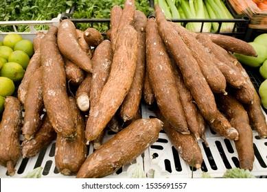 Manihot esculenta (cassava, manioc, yuca, macaxeira, mandioca), brown, on sale at local market, vegetable, food