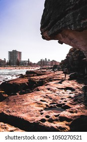 Manly beach in Australia, golden hour on the rocks