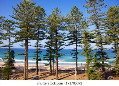 Manly Beach in Sydney Australia