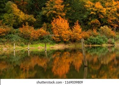 A manmade lake near Multnomah Falls in the Columbia Gorge, Oregon.  Taken in Fall 2016.