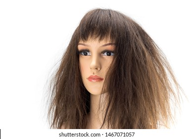 Mannequin woman head fake with damaged  hair wig on white background.