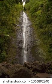 Manoa Falls - Hawaii